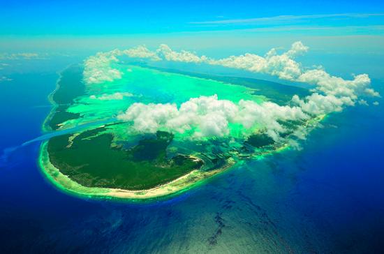 Aldabra Coral Reef