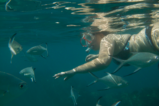 Snorkelling seychelles yacht trip