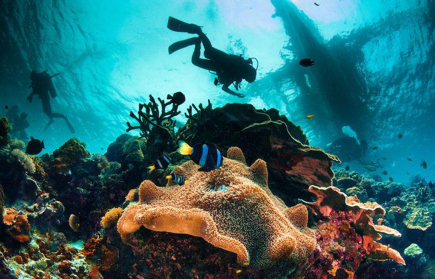 Top-8-scuba-diving-destinations-in-the-Caribbean